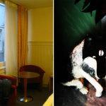 Dormire ad Amsterdam: B&B Studio 14 (recensione)