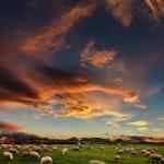 Vulcano in Islanda: stop ai voli in Irlanda