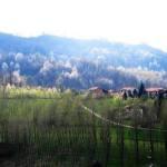 """B&B """"Il giardino dei ciliegi"""" nella Val Cerrina"""
