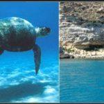 Le 10 migliori spiagge italiane