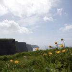 Da Galway alle Cliff of Moher in macchina