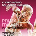 """Body worlds"" a Roma: i cadaveri (in posa) di von Hagens in mostra alle Officine Farneto"