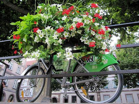 Bicicletta a strasburgo
