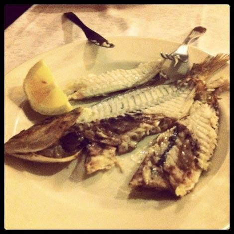 dove mangiare pesca a terracina ristorante ponte rosso