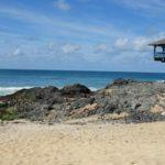 "Boa Vista (Cape Verde) with children: the ""no stress"" island of dunes"