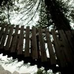 Adventure Park di Colfosco: divertirsi con i bimbi in Val Badia