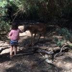 Il mio weekend (con bambini) in Maremma: Capalbio e dintorni