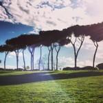 Villa Doria Pamphili a Roma: Vivi Bistrot e Picnic box