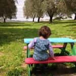 Mangiare in fattoria a Roma: Agriturismo di Pacifico