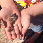 Bellaria Igea Marina: la (vera) vacanza per famiglie
