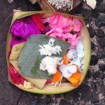 Vacanza yoga a Bali: la mia esperienza allo Yoga Barn