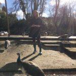 Una giornata al Bioparco di Roma