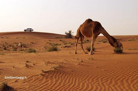 Weekend all'estero con bambini: Dubai