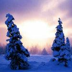 Offerte per vacanze sulla neve nelle Dolomiti