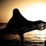 Capodanno a Sharm con partenza il 28 Dicembre