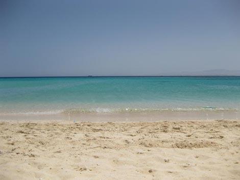 il mare e la spiaggia di Paradise Island