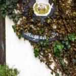 La Subida, piccolo paradiso intorno al Collio goriziano