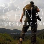 Viaggio in Uganda alla ricerca dei gorilla