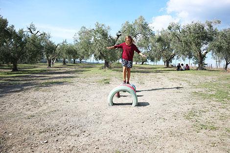 Agriturisimo fattoria di pacifico roma
