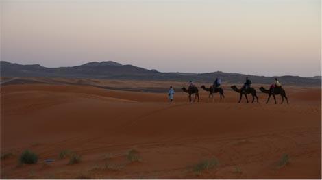 dune erg chebbi in marocco