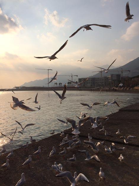 Il lungomare di Salerno