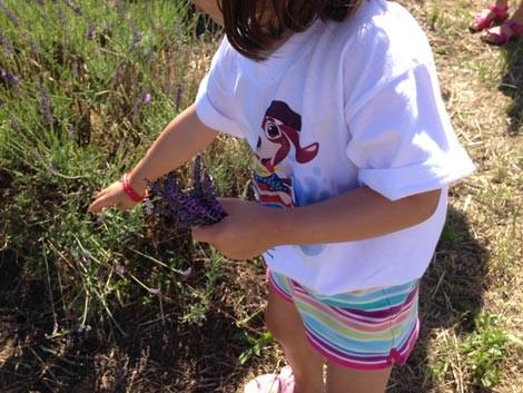 vacanza con bambini a bellaria igea marina