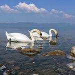 Gita al lago di Bracciano: Anguillara con i bambini