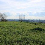 Roma insolita: il Monte dei Cocci e il Cimitero acattolico