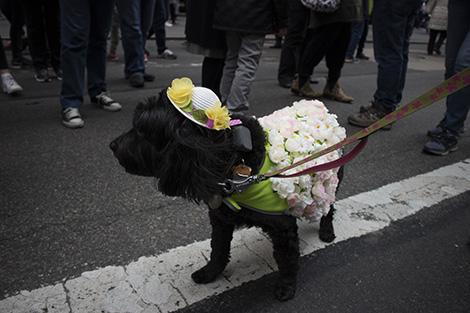 New York con bambini: la Easter Bonnett Parade