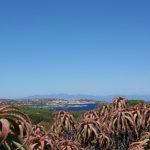 Noleggio barche in Sardegna: le info davvero utili