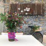 Caffeina Christmas Village a Viterbo: parcheggi, file, sconti e dove dormire