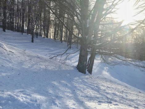 neve a monte lavata