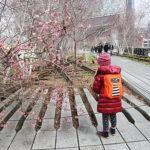 Pasqua a New York: gli indispensabili da mettere in valigia