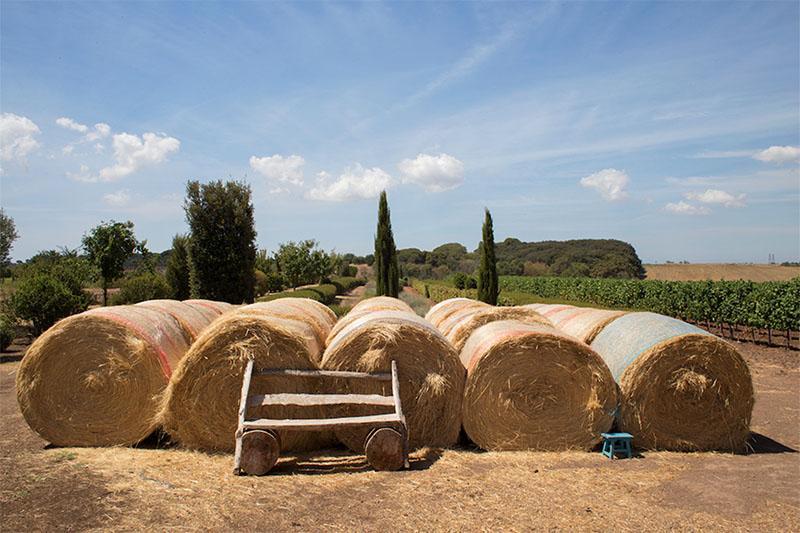 fattoria di fiorano